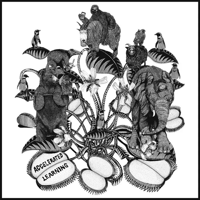 Truckers of Husk - Accelerated Learning (2011)
