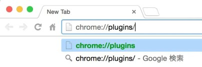 Chromeでコピペが遅くて固まる現象の解決方法2:プラグインの不具合をチェック