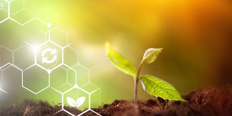 Sustainable Stewardship Greenwashing