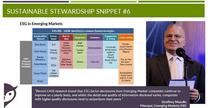 ESG factors emerging markets