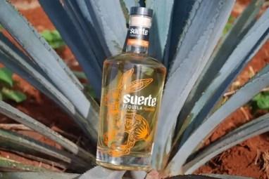 suerte-tequila-6