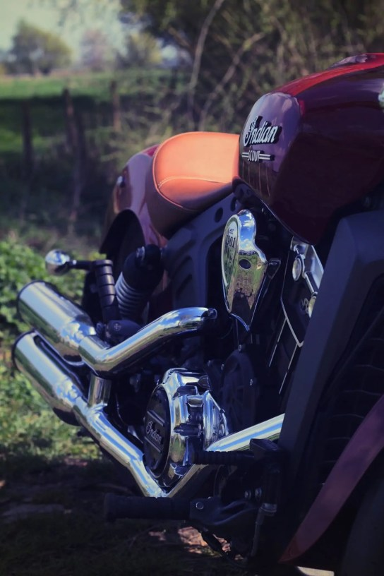 Indian Scout6