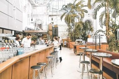 Wien (palmenhaus 2)