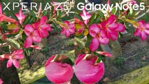 galaxy note 5 vs xperia z5 camera review 9
