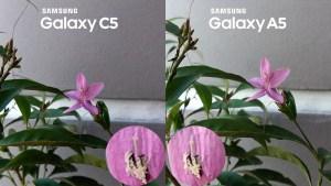 Samsung Galaxy C5 vs Galaxy A5 2016 Camera Review 2 macro close up