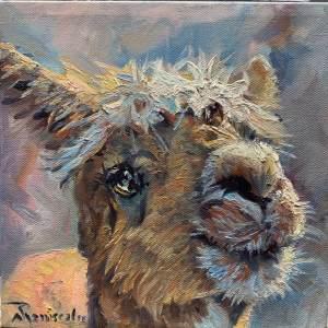 Haughty Llama