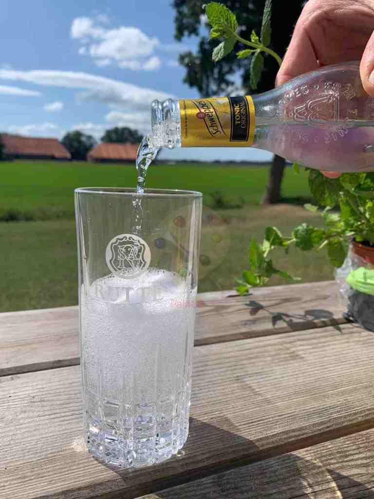 Schweppes Tonic Premium