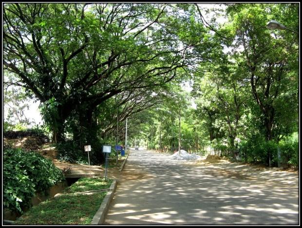 HAL campus