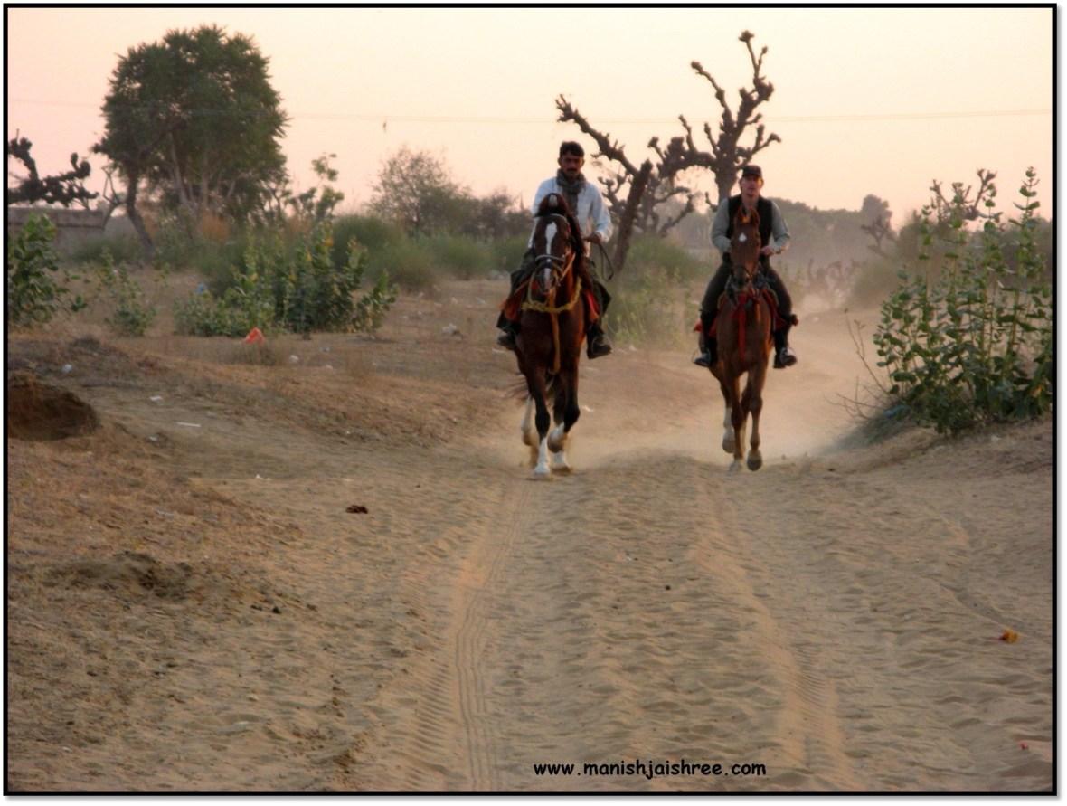 gallooping horses