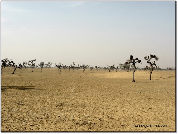 Another view of the terrain, Way to Mandawa