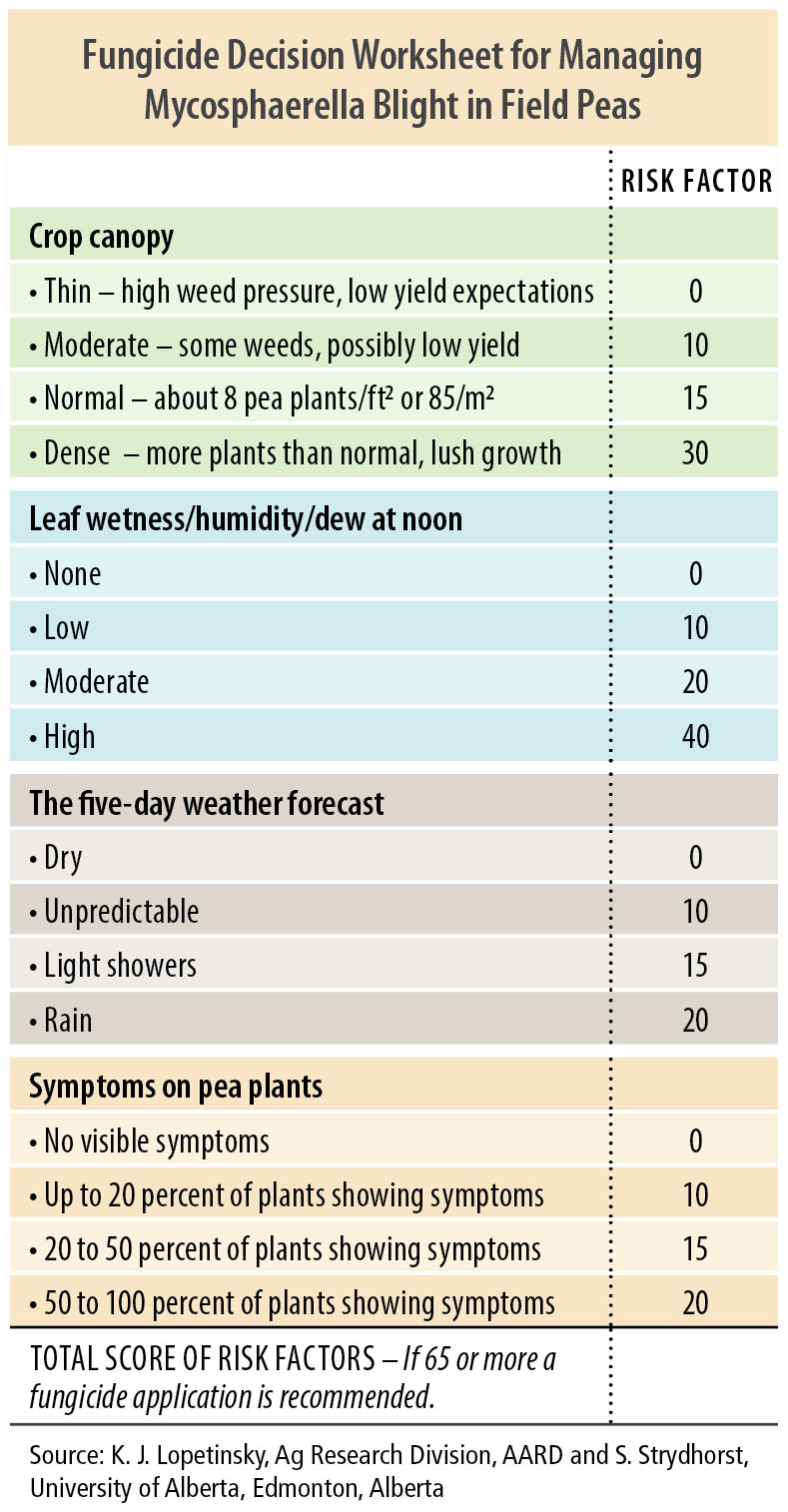 Managing Ascochyta (Mycosphaerella) Blight in Field Peas