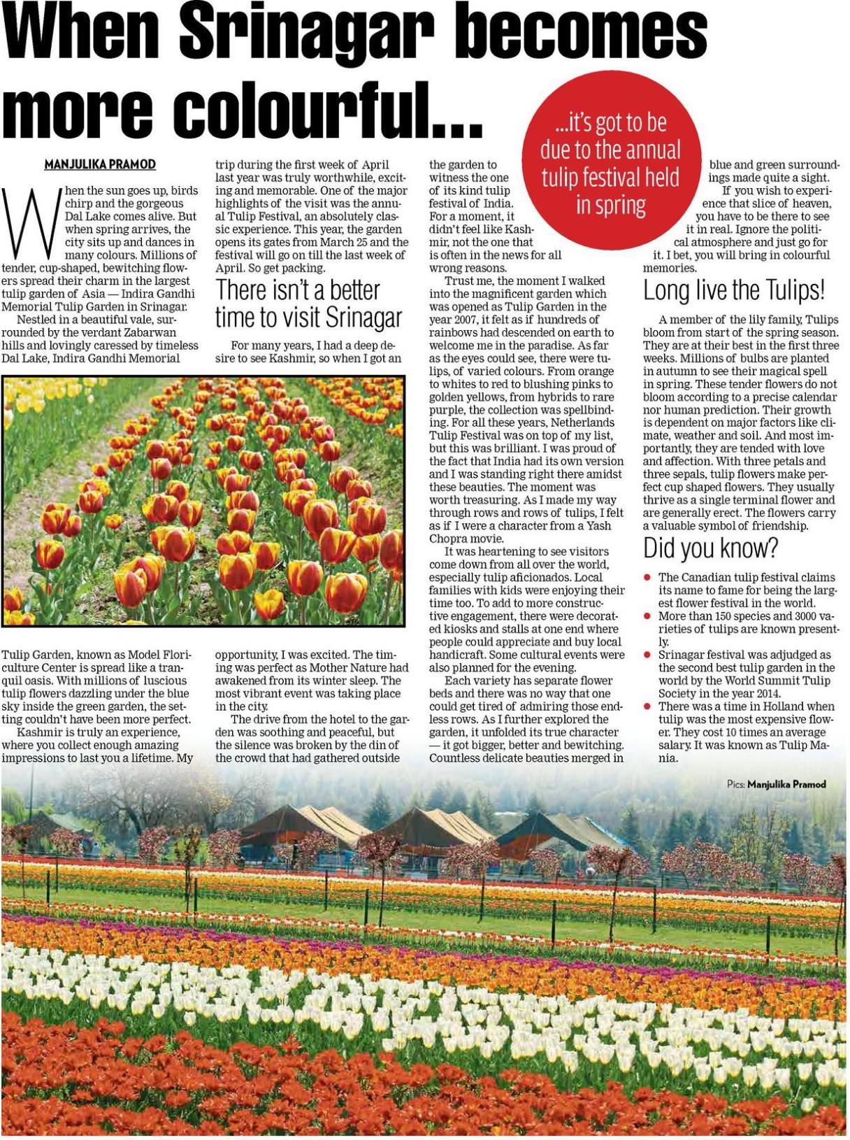 Srinagar, Tulip festival