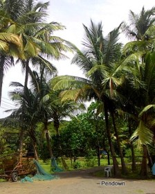 Goa, Monsoons, Best Experiences, Sky