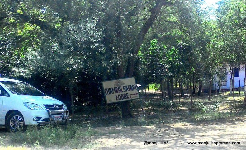 Chambal Safari Lodge, Uttar Pradesh, Travel and Tourism