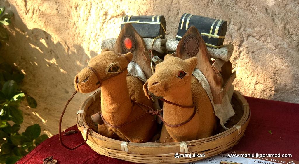 Miniature Camels-Dubai
