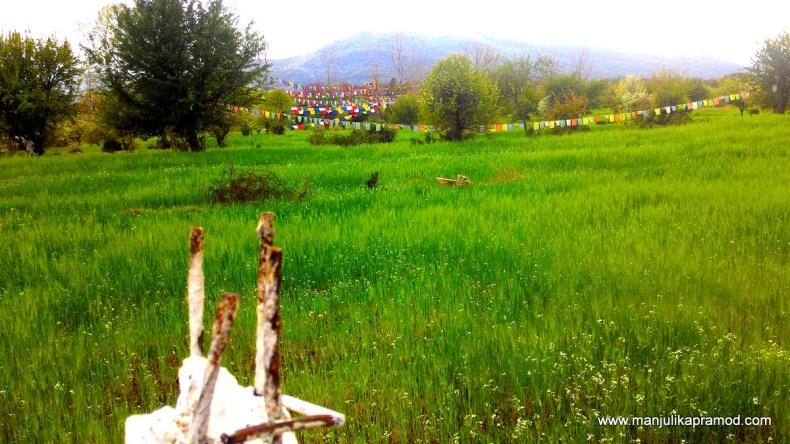 Village walk, Rural tourism, India, Travel blogger
