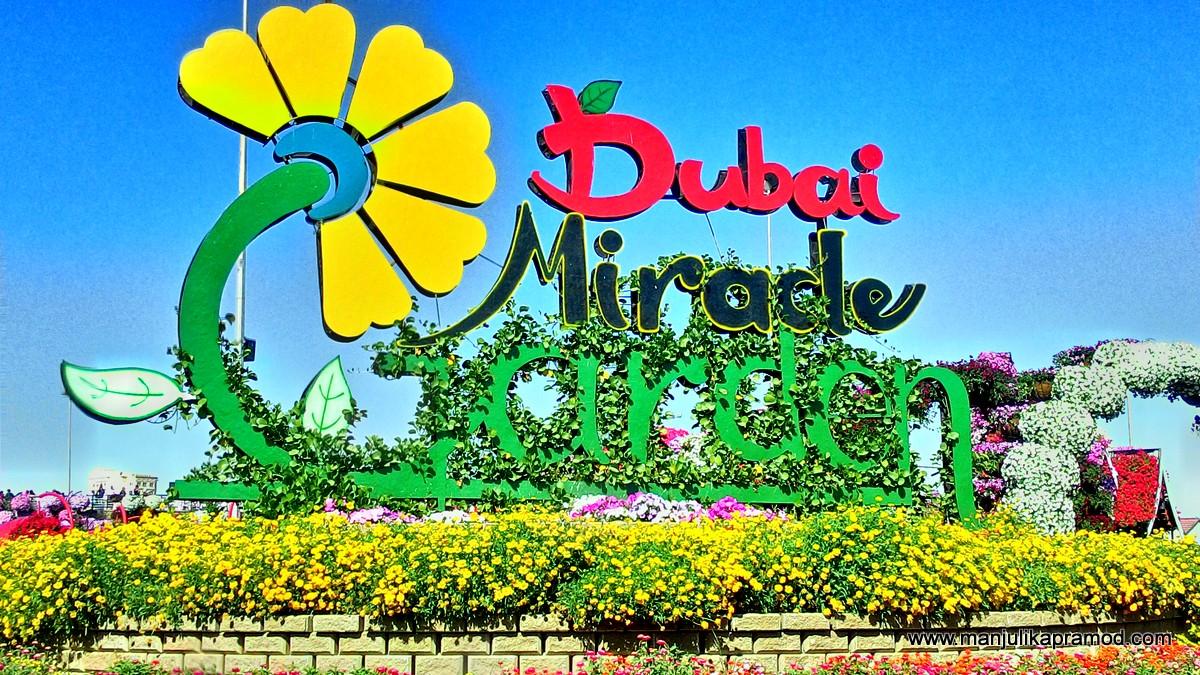 DUBAI MIRACLE GARDEN, Pictures
