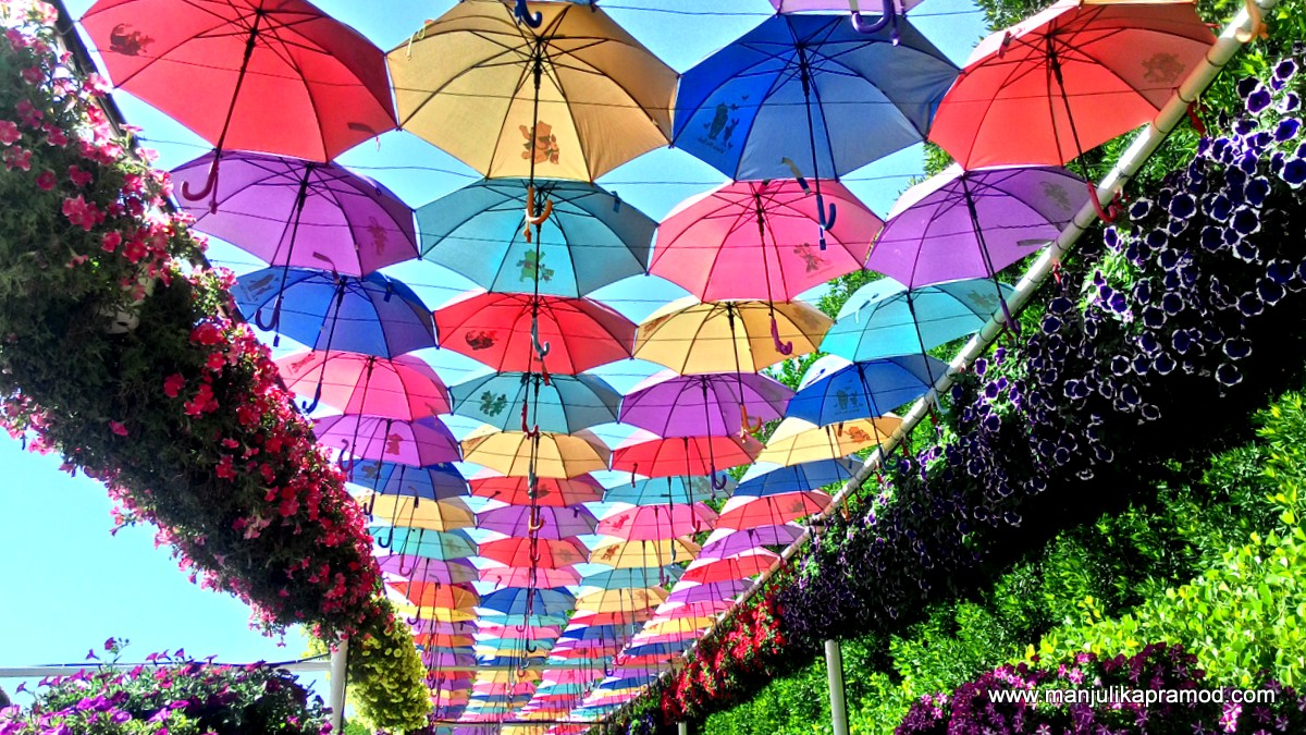 Umbrellas, Dubai, Travel, Things to do in Dubai, Dubai Miracle Garden
