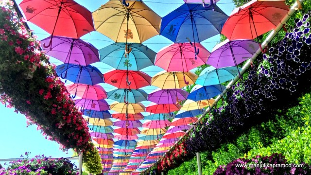 Umbrellas, Dubai, Travel, Things to do in Dubai, Dubai Miracle Garden