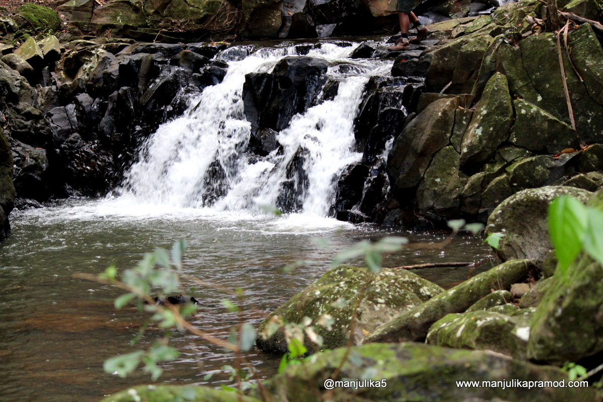 The lovely waterfall at Federica nature Reserve