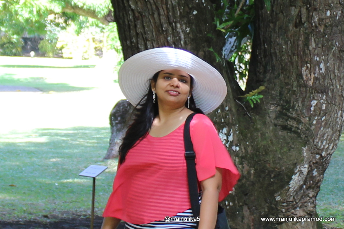 Footloose and Fancy Free, Idiom, Travel blogger
