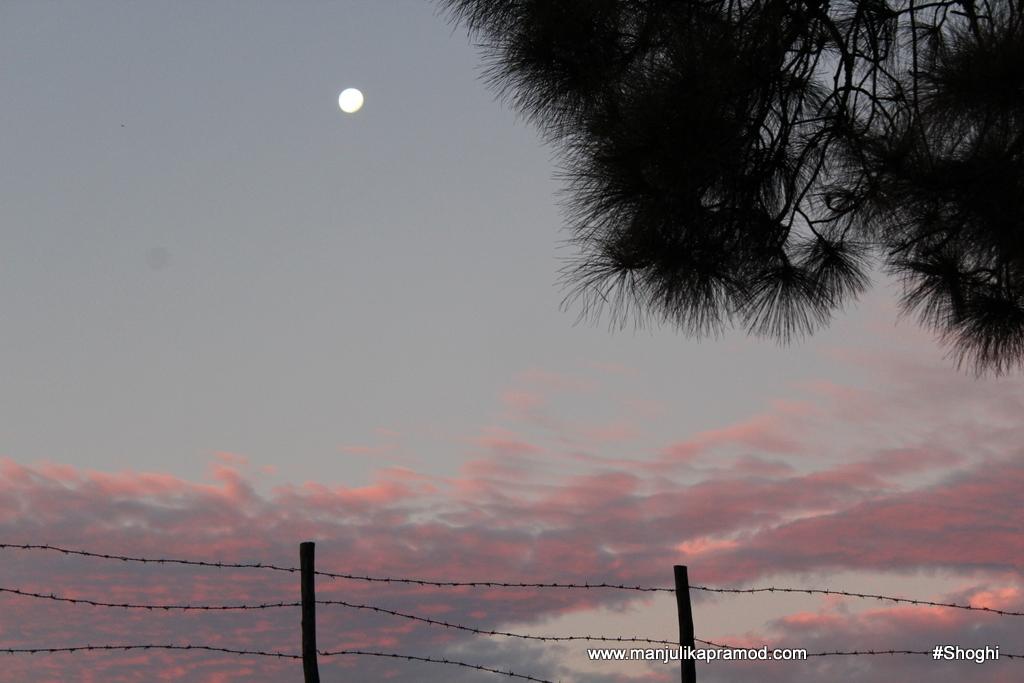 november-morning-in-the-hills-shimla