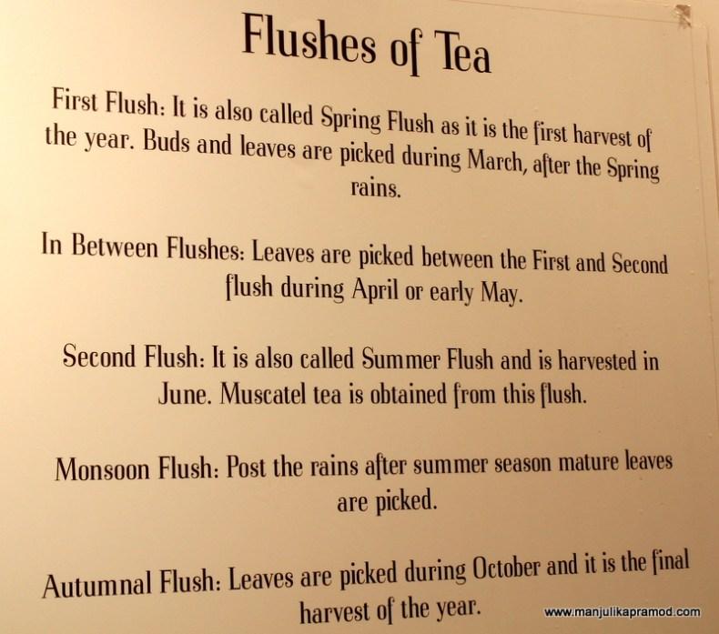 Flushes of Tea