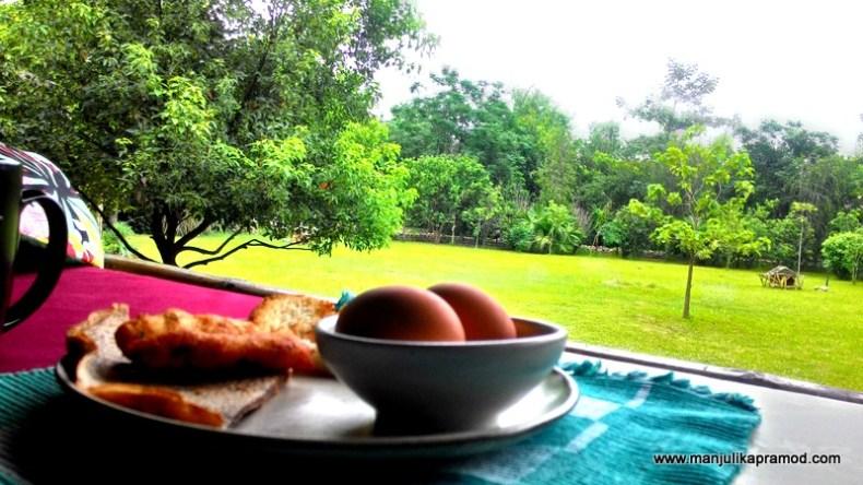 Breakfast, Jungle, Chitwan