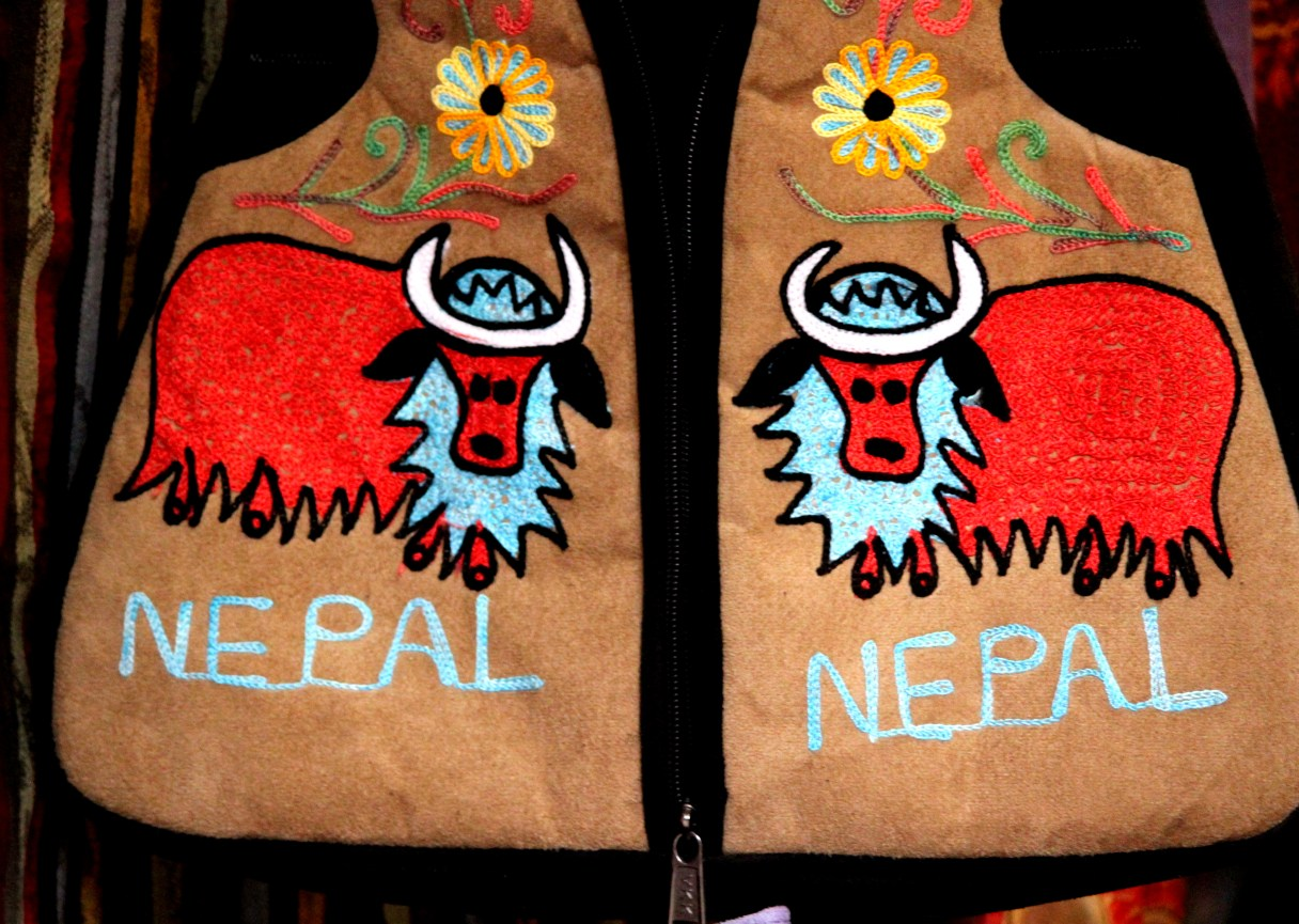 Nepal, Travel blogger