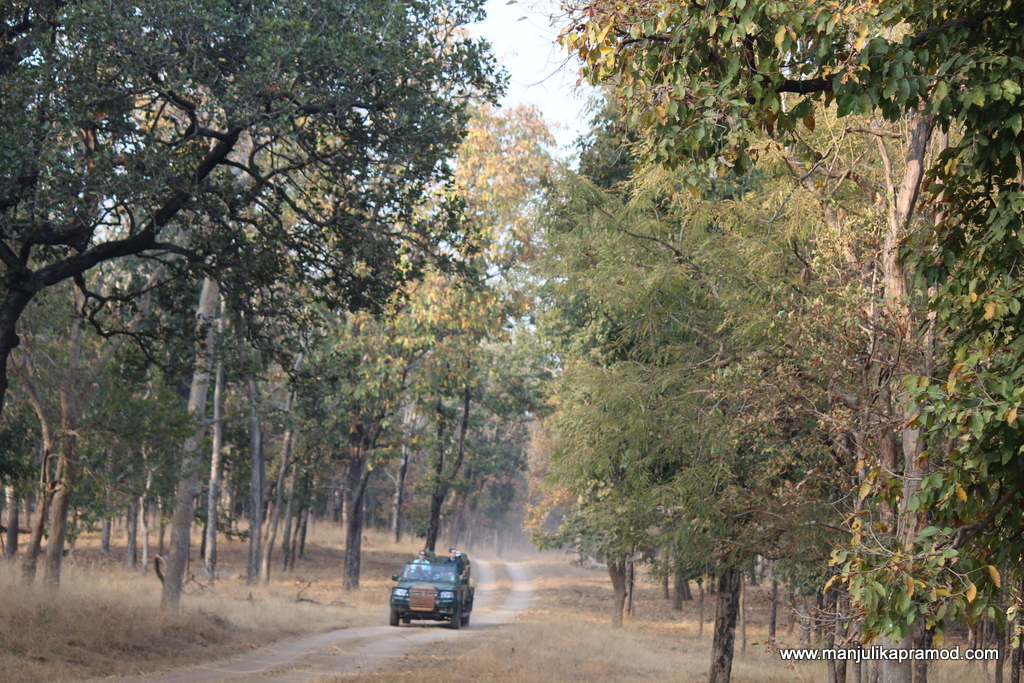 Pench, Safari, Khursapur