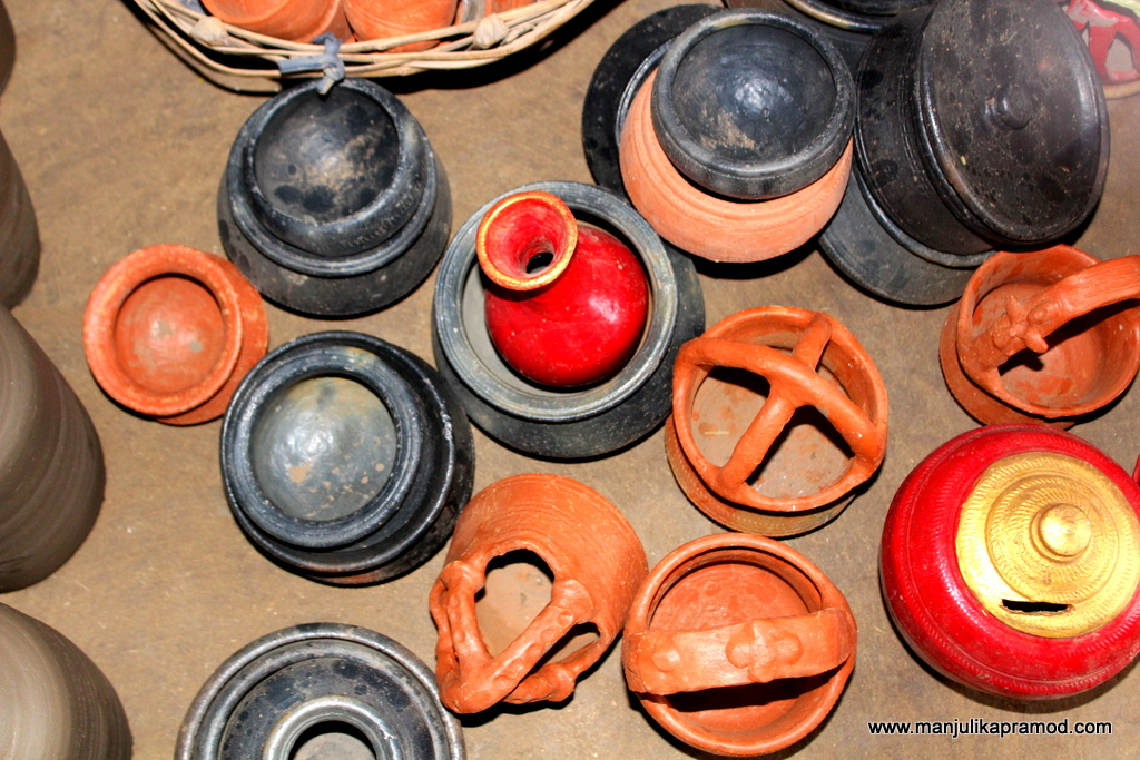 Pachdhar Potter's Village, Travel, Safari