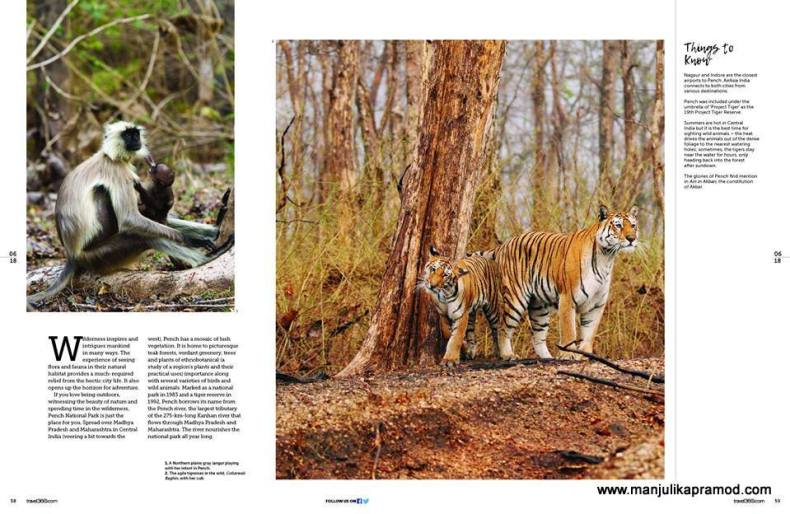 Safari and wildlife
