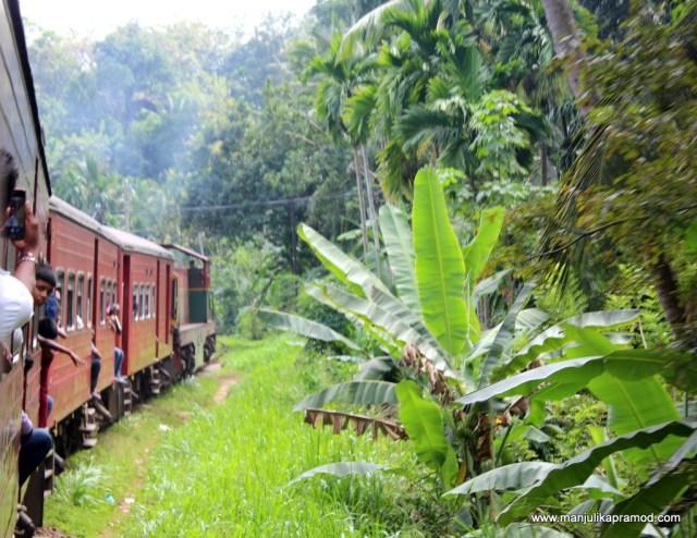 Train Journey in Sri Lanka
