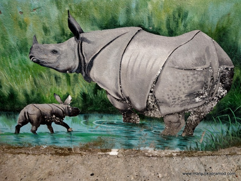 Beautiful art work showing the one-horned rhinoceros of Chitwan