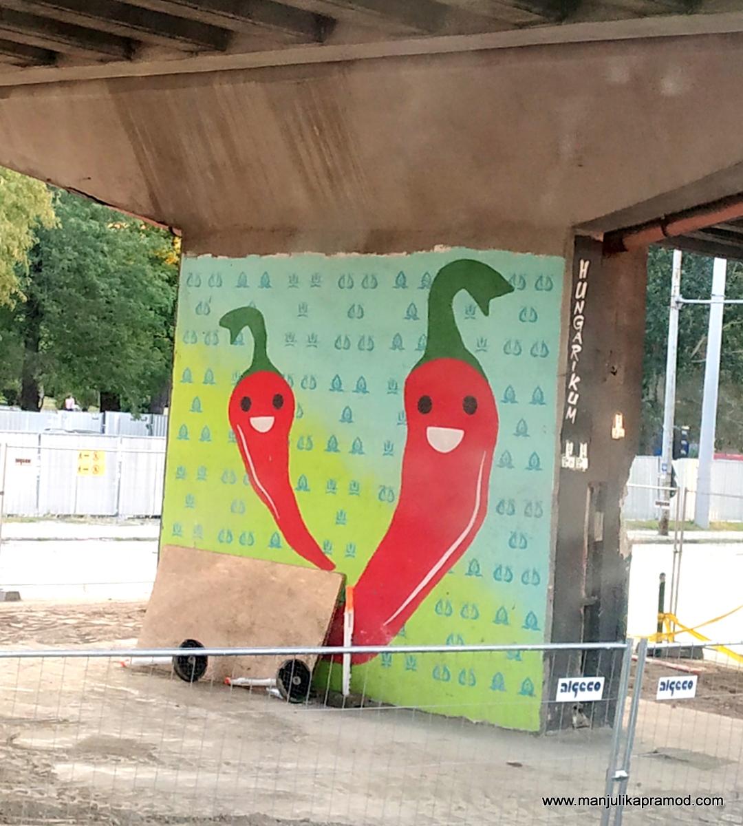Chiili peppers on walls