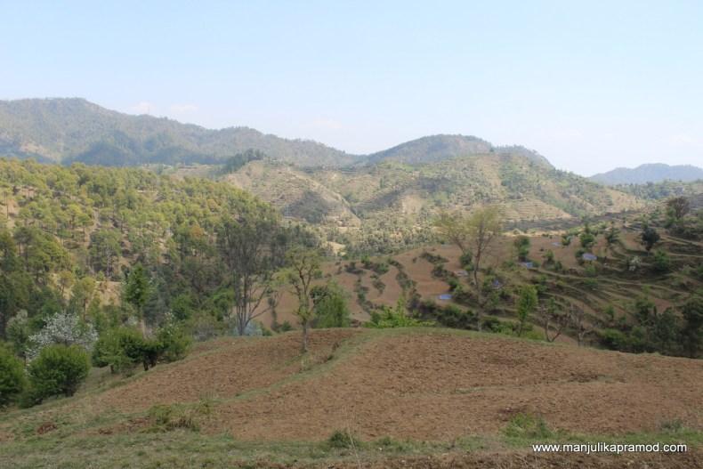Road trip to Jageshwar temple