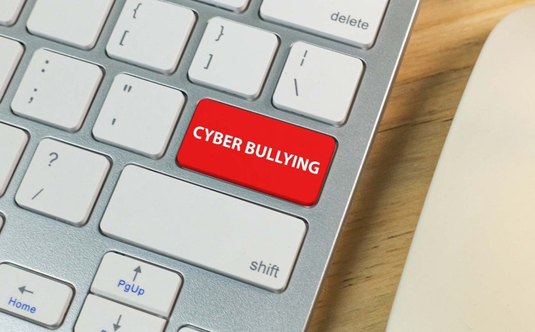 Cyber bulling, the youth and the law