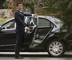 Driver Opening Door