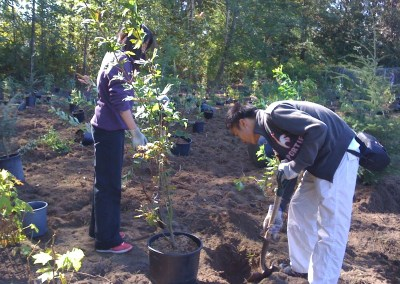 William Beagle Park Tree Planting