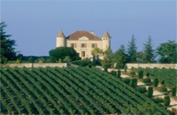vin-cahors aux alentours du grand Gîte de La Gabertie