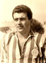Castaño Pedrosa