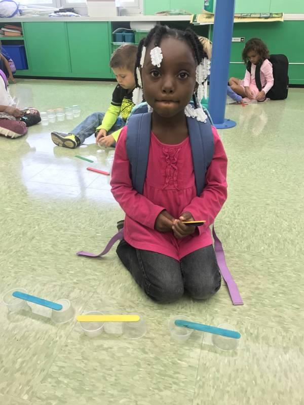 Springmill Stem Elementary