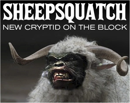 Sheepsquatch