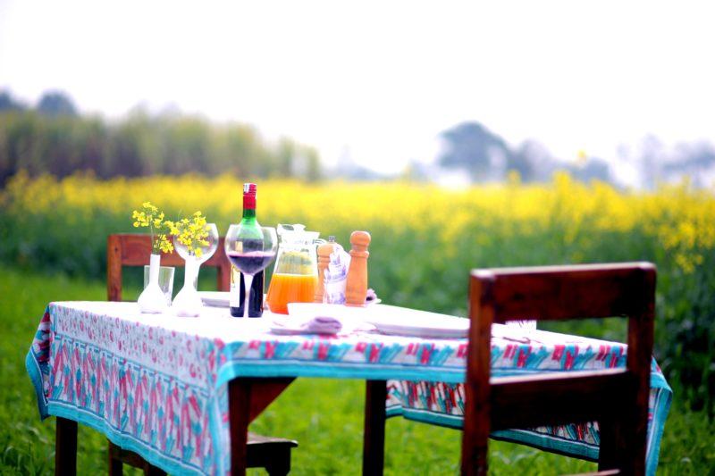 food-at-punjabiyat-sorrounded-mustard-field