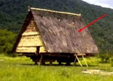 4 Keunikan Rumah Adat Tradisional Tambi Sulawesi Tengah Yang Jarang Orang Tahu Mantabz