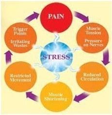 chronic myofascial pain – Stress Cycle