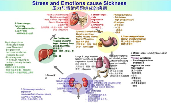 Stress and Emotions Cause Sickness