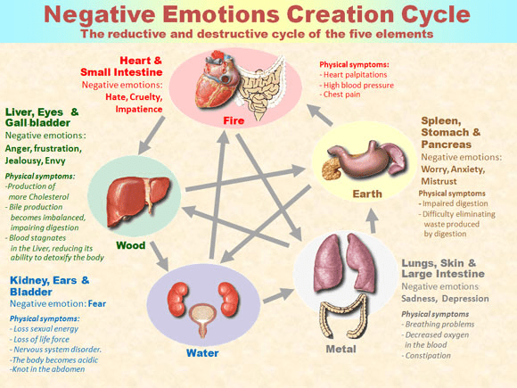 The negative emotions are the body's garbage