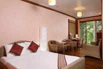 Natural Standard Room