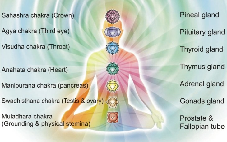 7 cakra dalam tubuh